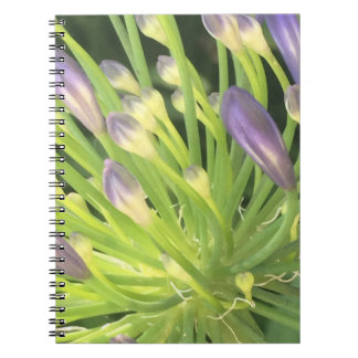 Purple Splash Flower Notebook