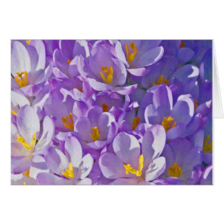 Purple Spring Floweres Greeting Card