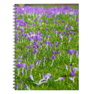 Purple Spring flowers notebook