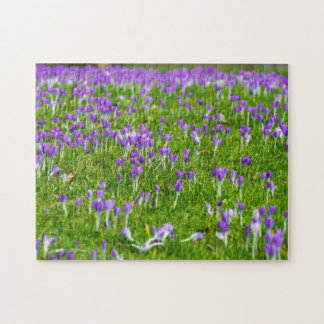 Purple Spring flowers photo puzzle