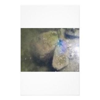 PURPLE STARFISH IN THE WATER CUSTOM STATIONERY