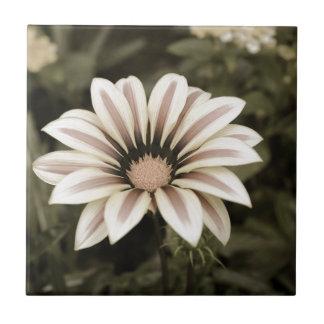 purple striped flower agedprupleyellow ceramic tile