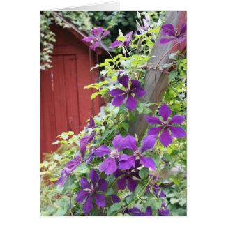 Purple Summer Haze Card
