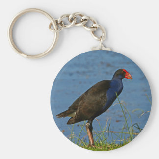 Purple Swamphen Key Ring