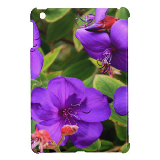 Purple Tibouchina Flowers Cover For The iPad Mini