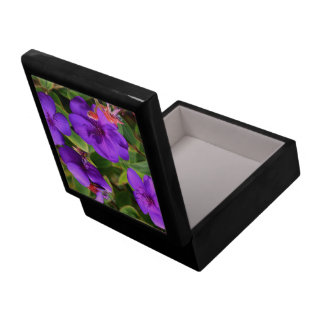 Purple Tibouchina Flowers Gift Box