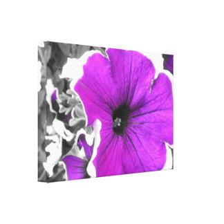 Purple Tinted Black and White Petunias Canvas Print