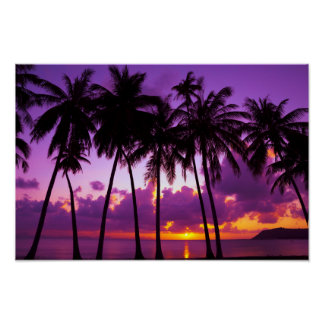 Purple Tropical Sunset 2 Poster