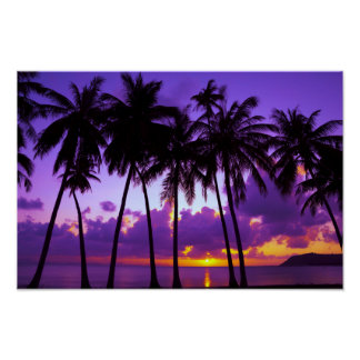 Purple Tropical Sunset 3 Poster