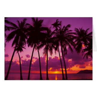 Purple Tropical Sunset Note Card