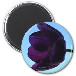 Purple Tulip 6 Cm Round Magnet