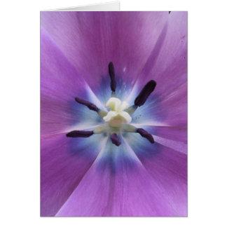 Purple Tulip Card