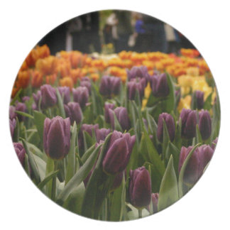 Purple Tulip Dinner Plate