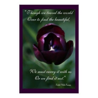 Purple Tulip Inspirational Poster