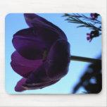 Purple Tulip Mouse Mat