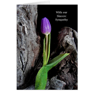 Purple Tulip on Driftwood Card