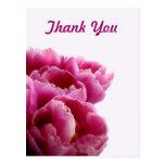 Purple Tulips Thank You Postcards