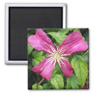 Purple Vine Flower Square Magnet