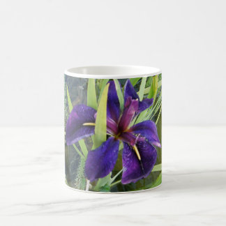 Purple Water Iris Coffee Mug