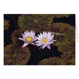 Purple Water Lilies Greeting Card