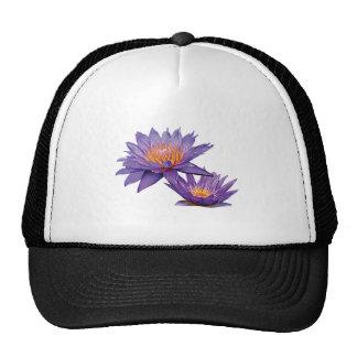 Purple Water Lilies Mesh Hat