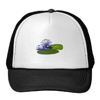 Purple Water Lilies in Sunshine Trucker Hats