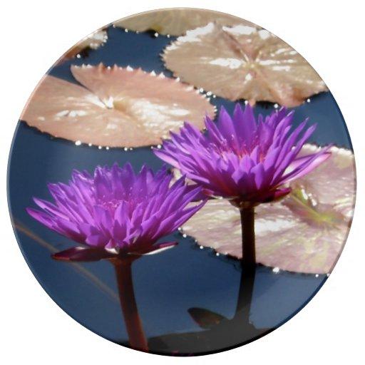 Purple Water Lilies Porcelain Plate