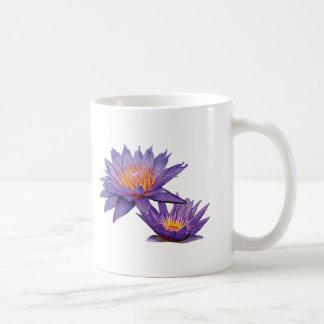Purple Water Lilies Mugs