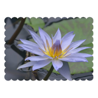 Purple Water Lily 13 Cm X 18 Cm Invitation Card