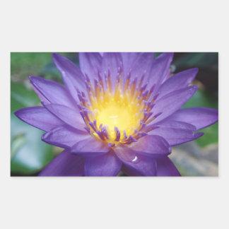 "Purple Water Lily 4.5"" x 2.7"" Rectangle Sticker"