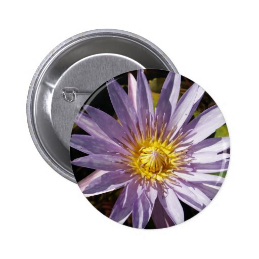 Purple Water Lily Button