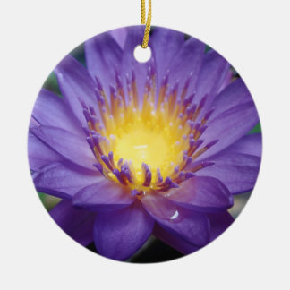 Purple Water Lily Circle Ornament