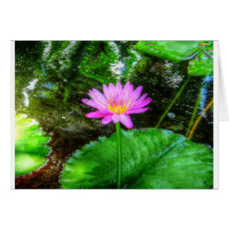 Purple Water Lily Greeting Card