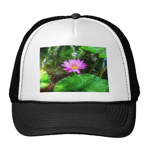 Purple Water Lily Trucker Hat