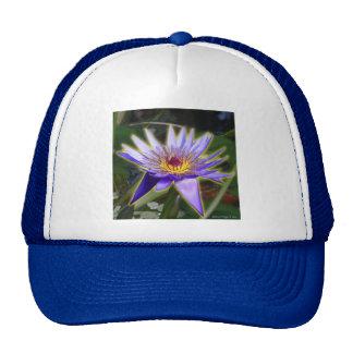 Purple Water Lily Trucker Hats