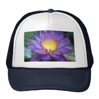 Purple Water Lily Mesh Hats