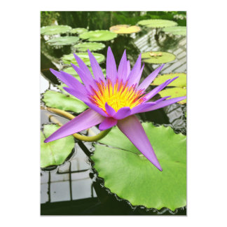 Purple Water Lily Invitations