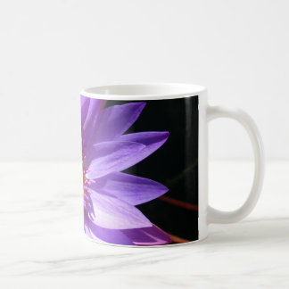 Purple Water Lily Classic White Coffee Mug