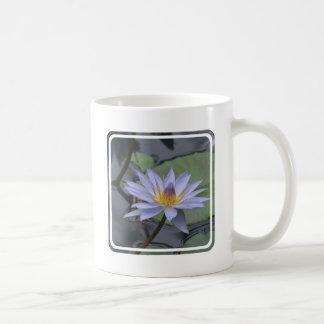 Purple Water Lily Coffee Mugs