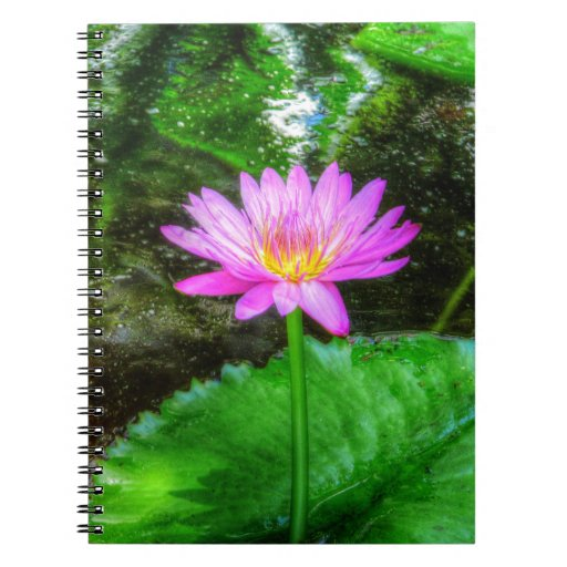 Purple Water Lily Spiral Note Books
