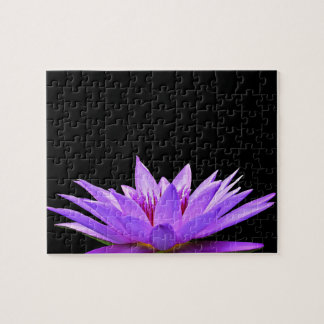 Purple water lily on black background puzzles