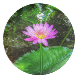 Purple Water Lily Dinner Plate