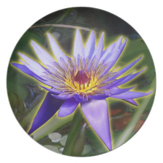 Purple Water Lily Plate
