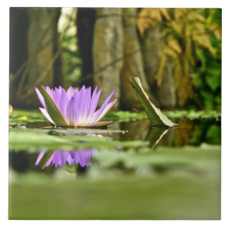 PURPLE WATER LILY REFLECTING IN A POND LARGE SQUARE TILE