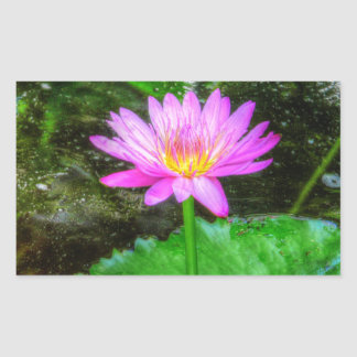Purple Water Lily Rectangle Stickers