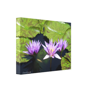 Purple Water Lily Trio Canvas Prints