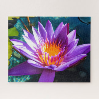 Purple Waterlily Jigsaw Puzzle
