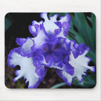 Purple & White Mousepad