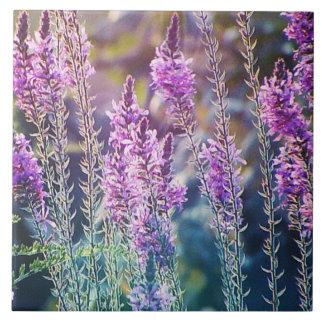 Purple wild flower tile