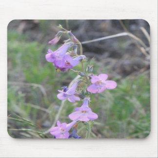 Purple Wildflower 2 Mousepad